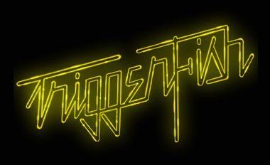 "Visueel van project Triggerfish : 1er Album ""Silverlining"""