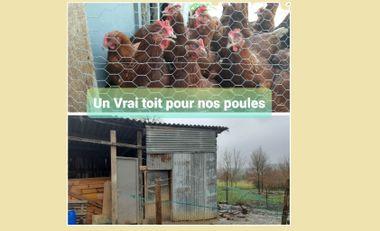 Visueel van project Un VRAI toit pour nos poules