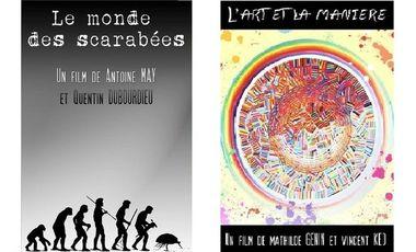 Visueel van project Courts-métrages L'ART ET LA MANIÈRE et LE MONDE DES SCARABÉES