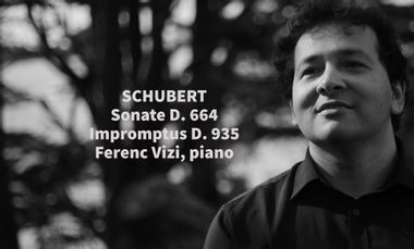 Visueel van project CD  Schubert par Ferenc Vizi