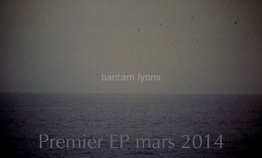 Visueel van project Bantam Lyons