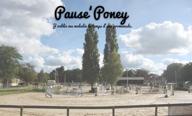 Project visual Pause' Poney
