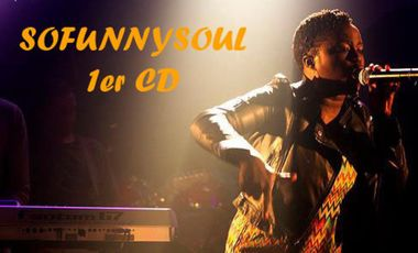 Visueel van project Sofunnysoul 1er CD