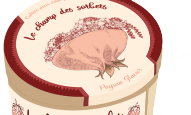 "Project visual ""Le champ des sorbets"" , une culture du plaisir"