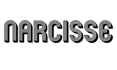 Visuel du projet NARCISSE