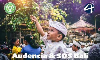 Visuel du projet Le projet humanitaire SOS Bali par 4 étudiants nantais !