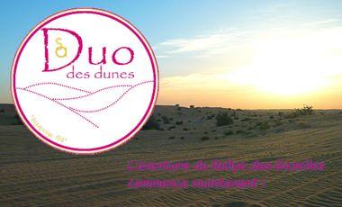 Visueel van project Duo des dunes au Rallye Aïcha des Gazelles 2014 : Partageons ce projet ensemble !