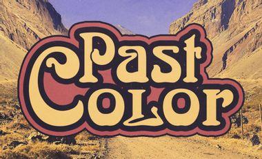 Visuel du projet Production 1er Album Vinyle PAST COLOR