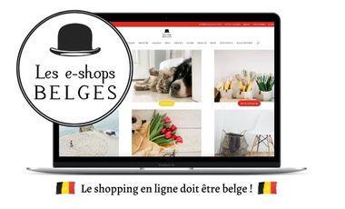 Visuel du projet Les e-shops belges : e-consommons en Belgique