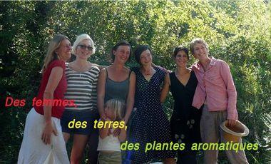 Visuel du projet Des femmes, des terres, des plantes aromatiques