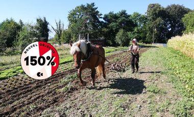 Visueel van project Des étoiles à la Terre : un cheval pour une future maraichère en agriculture bio