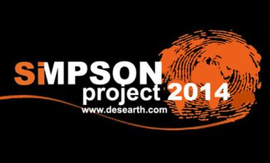 Project visual Simpson Project