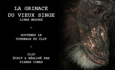 Project visual La Grimace du Vieux Singe