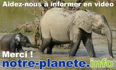 Visueel van project Informer en vidéo avec notre-planete.info
