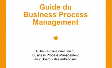 Project visual BPM Business Process Management Guide