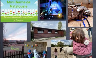 Visuel du projet Création d'un chalet sensoriel à la Mini-Ferme