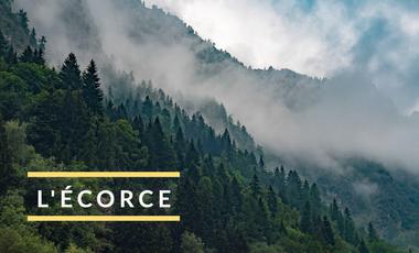 Visueel van project L'écorce
