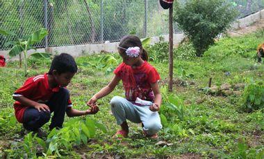 Visueel van project L'école des jeunes pousses