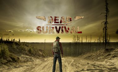Visueel van project Dead Survival