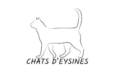 Project visual CHATS D'EYSINES