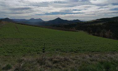 Visuel du projet Maraîchage dans les Alpes de Haute Provence