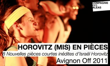 Visuel du projet HOROVITZ (mis) en Pièces