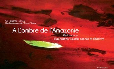 Project visual A l'ombre de l'Amazonie
