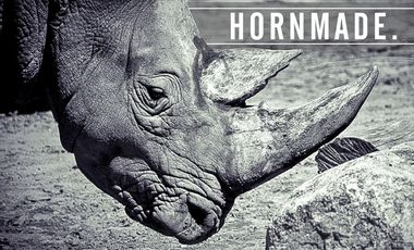 Project visual Hornmade.