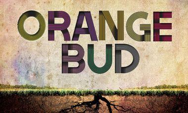 Visueel van project Coup de Pouce Album - Orange Bud