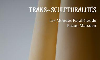 Project visual Trans-sculpturalité : les mondes parallèles de Kazuo Marsden