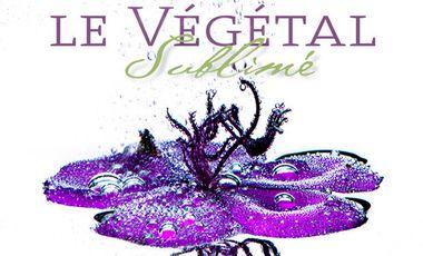 Visuel du projet Le Végétal Sublimé, le livre
