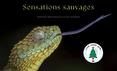 Visueel van project Sensations sauvages : osez l'aventure ! Le livre de M. Berroneau et L. Saubesty