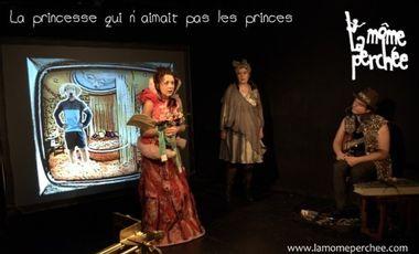 Visueel van project La Princesse qui n'aimait pas les princes