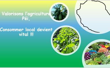 Visuel du projet Agriculture local et biologique à Maison-Rouge