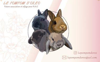 Visuel du projet Le Pompom d'Oreo