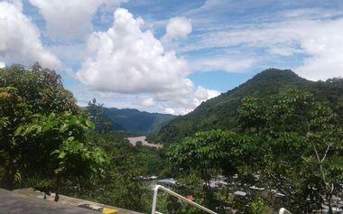 Visuel du projet POUR EDITER LIVRE - AMAZONIE, TA FORET M'APPELLE