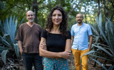 """Visueel van project Lise Van Dooren Trio  """"Jamrosa"""""""