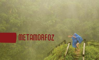 Visueel van project Metamorfoz, création théâtre-musical