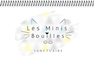 Visuel du projet Collection 2022 - Les Minis Bouilles