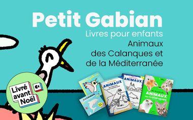 Visueel van project Petit Gabian