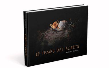 Visuel du projet Le Temps des Forêts