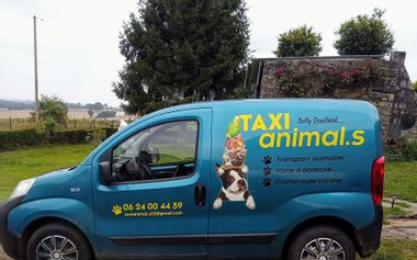 Project visual Taxi animalier