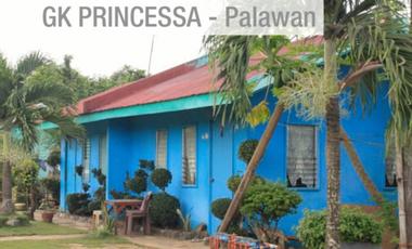 Visueel van project Mission Princesa 2014