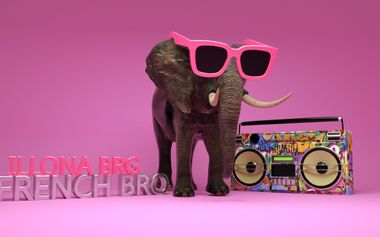 Project visual frenchBro ft illonaBrg
