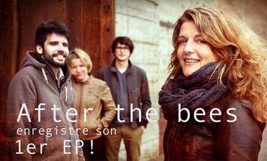 Visueel van project AFTER THE BEES enregistre son 1er EP !