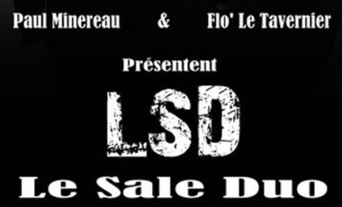 Visueel van project LSD (LE SALE DUO)