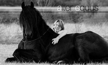 Project visual Alter Equus