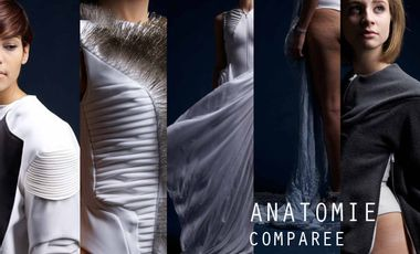 Visueel van project Anatomie Comparée