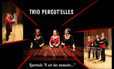Visuel du projet Participez à l'achat de notre marimba pour que nous puissions jouer notre spectacle !