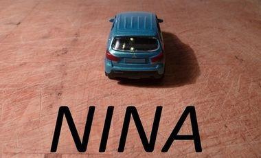Visueel van project NINA
